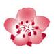 client-icon1.jpg